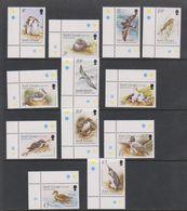 South Georgia 1999 Birds / Definitives 12v  (all Corners)  (39451A) - Zuid-Georgia