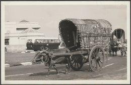 Ox Drawn Cart, Colombo, Ceylon, C.1950s - Photograph - Places