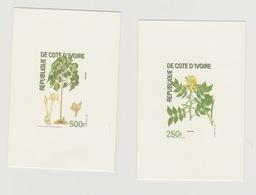 Côte D'Ivoire Ivory Coast Proof De Luxe 2004 Plantes Plants Pflanzen Fleur Flower Blume - Côte D'Ivoire (1960-...)