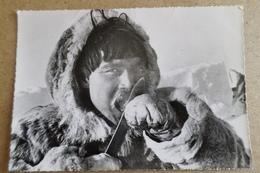ESQUIMAUX - Le Repas De Poisson Gelé - Missionnaires Oblats - Groenland