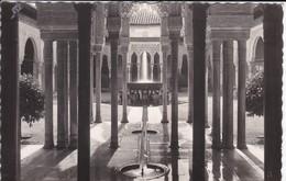 ESPAGNE----GRANADA--la Alhambra Columnas Del Patio De Los Leones--voir 2 Scans - Granada