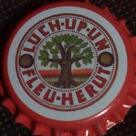 Lüch Up Un Fleu Herut Apfel Schorle Kronkorken Aurich 2018 Apple Soda Bottle Crown Cap TOP Capsule Chapa Gaseosa - Soda
