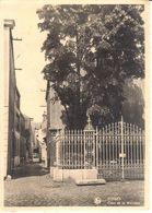 Fosses-la-Ville - CPA - Fosses - Cour De La Mairesse - Fosses-la-Ville