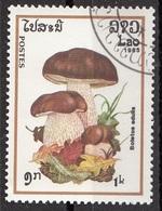 Laos 1985 Sc. 628 Mushrooms Funghi Champignons : BOLETUS EDULIS  Micologia Lao CTO - Funghi