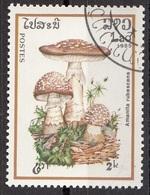 Laos 1985 Sc. 630 Mushrooms Funghi Champignons : Amanita Rubescens  Micologia Lao CTO - Funghi