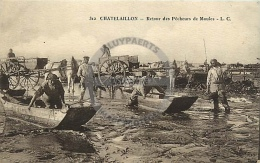 /! 7132 - CPA/CPSM  :  17 - Chatelaillon : Retour Des Pécheurs De Moules - Châtelaillon-Plage