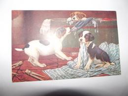 Cpa Animaux Chiens   De Raphael TUCK OILETTE ENGLAND SUPERBE CARTE - Tuck, Raphael