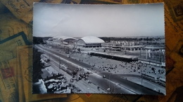 Yugoslavia, Serbia - Beograd, Бeoгpaд - Novi Sajam, New Fair - 1960? - Jugoslavia