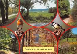CPM - LOMMEL - Elzen 145 - Bungalowpark De Vossemeren - Lommel