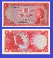 Rhodesia 1 Pound  1964   - REPLICA --  REPRODUCTION - Rhodésie