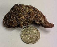 Coprolite DINOSAUR POOP Fossil From Madagascar (#K782) - Fossili