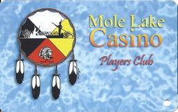 Mole Lake Casino - Crandon WI - Slot Card / 7 Lines Of Text On Reverse / Web Adr Starts Under Dash In Phone# - Cartes De Casino