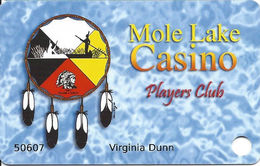 Mole Lake Casino - Crandon WI - Slot Card / 7 Lines Of Text On Reverse / Web Adr Starts Under 8 In Phone# - Casino Cards