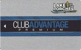 Lake Of The Torches Casino - Lac Du Flambeau, WI - BLANK Slot Card - Cartes De Casino