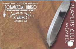 Northern Lights Casino - Carter, WI - BLANK Slot Card - Casino Cards