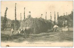 47 VILLENEUVE-SUR-LOT. La Fenaison 1906. Métiers De La Campagne - Villeneuve Sur Lot