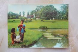 #8- INDONESIA POSTCARD 1970s 3D CARD(TOP STEREO), BOTANICAL GARDEN, BOGOR, WEST JAVA - Indonesia