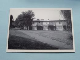 CLOS DES LAURIERS ROSES / OLEANDERGAARD Arch. Van Der Meeren 1960 ( Foyer Culturel D'Evere : Photo Paul LOUIS ) ! - Evere