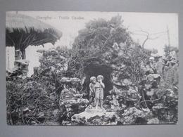 CPA Antique Postcard - Shanghai - Chine China - Public Garden - Kamegawa & Co - Chine