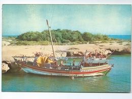 Djibouti Boutre Aux Iles Tfai 1975 1000-03 Andre Bourlon Editions Voilier Bateau Touristes - Djibouti