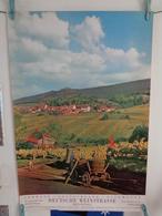 AFFICHE: ALLEMAGNE , Route Du Vin Palatinat Rhénan    ,H 74,2, L 50 - Affiches