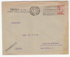 Italy, Erdődy & Co Letter Cover Travelled 1923 Trieste Pmk B180715 - 1900-44 Victor Emmanuel III