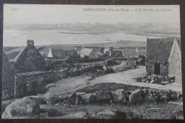 Trébeurden N°337 - L'Île Grande - Vue Générale - Carte Non-circulée - Trébeurden