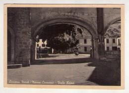 Cartolina Licciana Nardi (Massa Carrara) - Viale Roma. 1955 Ca. - Carrara