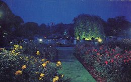 004305  Kingsnorth Gardens By Night, Folkestone - Folkestone