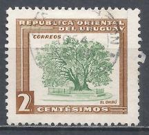 Uruguay  1954. Scott #607 (U) Ombu Tree * - Uruguay