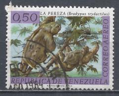 Venezuela 1963. Scott #C822 (U) Fauna, Three-toed Sloths * - Venezuela