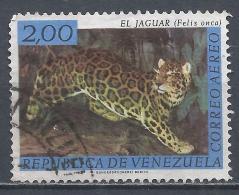 Venezuela 1963. Scott #C825 (U) Fauna, Jaguar * - Venezuela