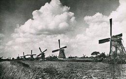 004316  Hollands Molenlandschap - Niederlande