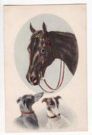 Illustrateur   C. REICHERT   Cheval Et Chien    Série 407  N° 1 - Andere Illustrators