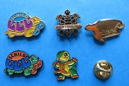 Lot De 5 Pin's,Tortue,Turtle,Schildkröte - Animals