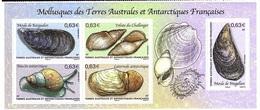 TAAF N° 697/701 Neufs** En Feuillet Mollusques - Französische Süd- Und Antarktisgebiete (TAAF)