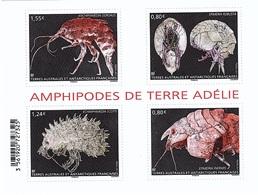 TAAF N° 807/10 Neufs** En Feuillet Crustacés - Neufs