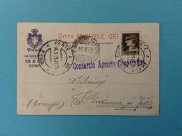 1933 CARTOLINA PUBBLICITARIA AGRICOLTURA SEMI DA PRATO DITTA MICHELE CEI PONTE A EGOLA PISA - Pubblicitari