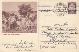 ORGANIZATIONS, SCOUTS, SCUTISME, YOUTH PIONEERS, PICKING MEDICINAL PLANTS, PC STATIONERY, ENTIER POSTAL, 1959, ROMANIA - Scoutisme