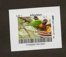 Biberpost - Papagei - Goldsittich (Guaruba Guarouba) - Papageien