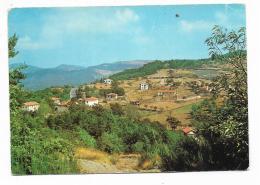 BORSELLI - VILLE SULLE RIPOSANTI ABETINE - NV FG - Firenze