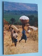 Transport Du Coton BURUNDI ( 68 - Iris - O.N.T. - Bastière ) Anno 19?? ( Voir Photo ) ! - Burundi