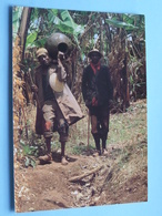 Cruche Pour Vin De Bananes BURUNDI ( 51 - Iris - O.N.T. - Bastière ) Anno 19?? ( Voir Photo ) ! - Burundi
