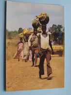 Jour De Fête - Pots De Vin De Bananes BURUNDI ( 66 - Iris - O.N.T. - Bastière ) Anno 19?? ( Voir Photo ) ! - Burundi