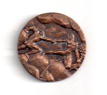 Médaille : Hommage De La Fédération Nationale Des Donneurs De Sang - Voir état - France