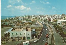 MANFREDONIA VIALE SIPONTINO  (90) - Manfredonia