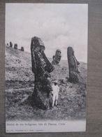 Tarjeta Postal Chile Chili - Isla De Pascua Easter Island Iles De Pâques - Idolos De Los Indigenas - J. Alian Valparaiso - Chili