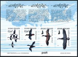 FINLAND/Finnland 2017 ARKTIKA, Arctic Migration Of Water Birds** - Albatro & Uccelli Marini