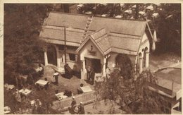 004381  Budapesti - Nemzetközi Vásár  1915 - Ungarn