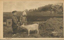004387  Volendam - Kinder Mit Kleiner Ziege - Volendam